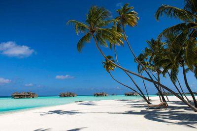 <strong>5. Gili Lankanfushi, Maldives</strong>