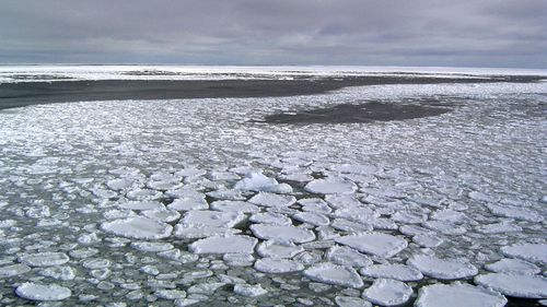 Ice in the ocean off the southern continent steadily increased from 1979 and hit a record high in 2014.
