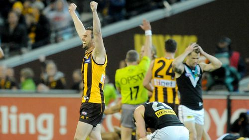 Hawks edge out Power in thriller to reach AFL grand final