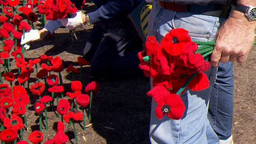 Volunteers have knitted the poppies during the past 18 months.