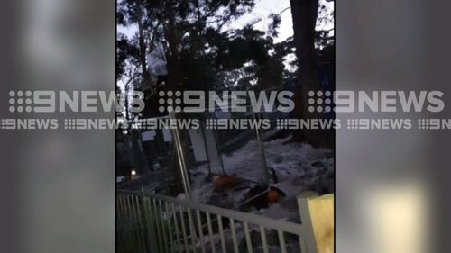 A burst water main has flooded three homes on the New South Wales Central Coast. Picture: 9NEWS