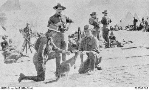 The mascot provided a morale boost for weary soldiers. (Australian War Memorial).