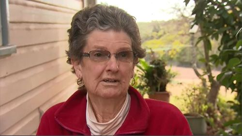 Local resident Dawne Dunlop told 9NEWS the sound of the impact echoed 'like a gunshot'. Picture: 9NEWS.