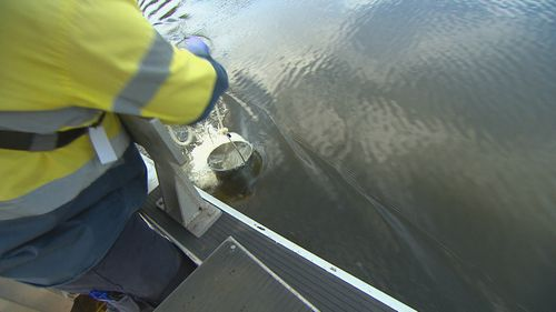 Sydney Water staff are running a testing blitz on our waterways, with recent downpours causing rapid stormwater run-off.