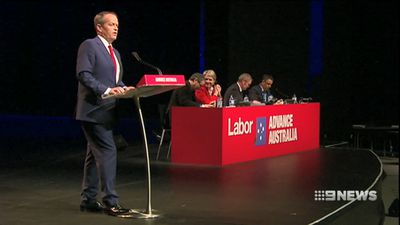 Labor 'preferred' but Bill Shorten slipping in popularity: Newspoll