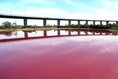 This Melbourne Lake Just Turned Bright Pink