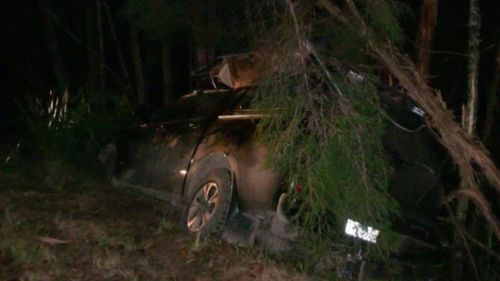 The victim crashed his car into an embankment following the incident. Picture: 9NEWS