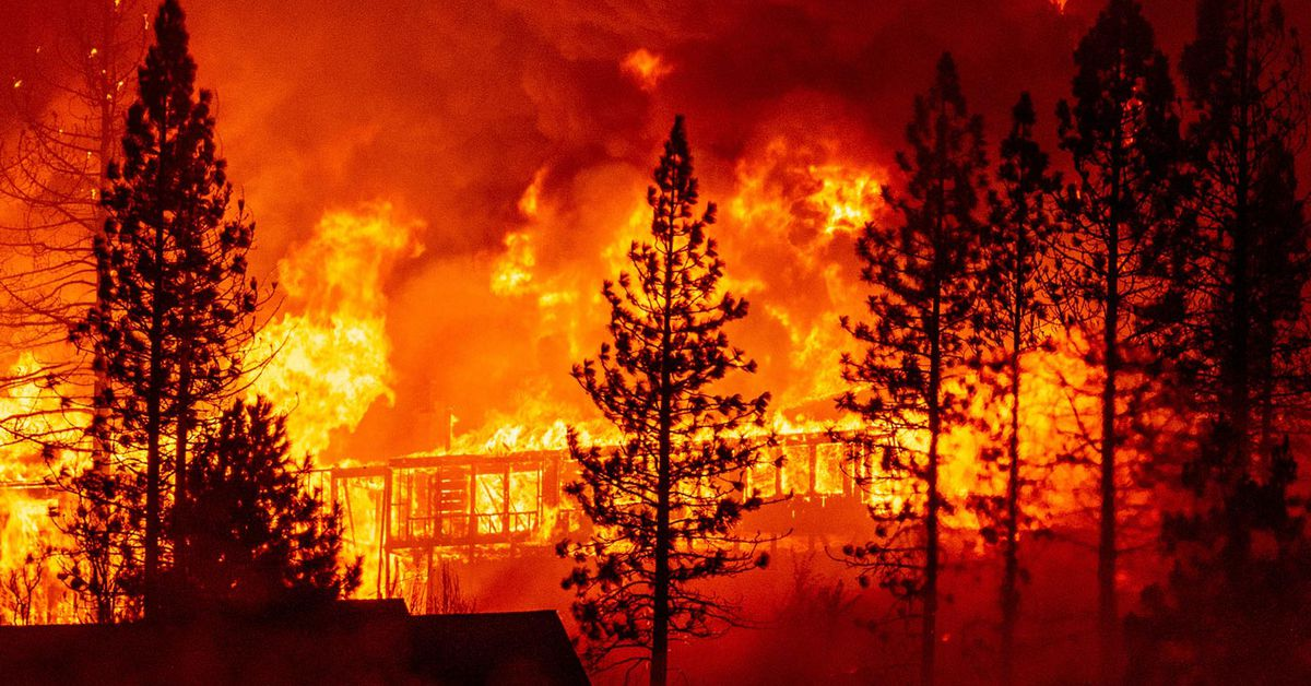 Scores dead missing as US West Coast fires continue to rage – 9News