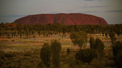Uluru is the biggest rock in the world and a sacred landmark for the Anangu people.