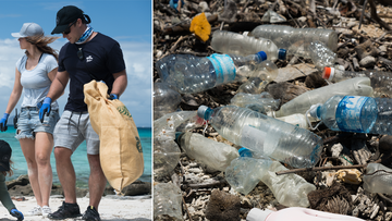 Far North Queensland is in the grips of a plastic pollution crisis