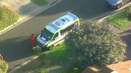 The man, aged in his 60s, died at the scene. (9NEWS)