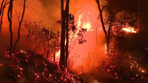 A 19-year-old Mount Morgan man has been charged over seven fires police will allege were deliberately lit.