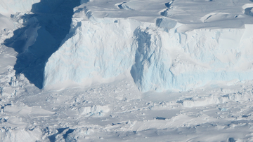 Two important glaciers in the Antarctic are sustaining rapid damage at their most vulnerable points, leading to the breaking up of vital ice shelves with major consequences for global sea level rise.