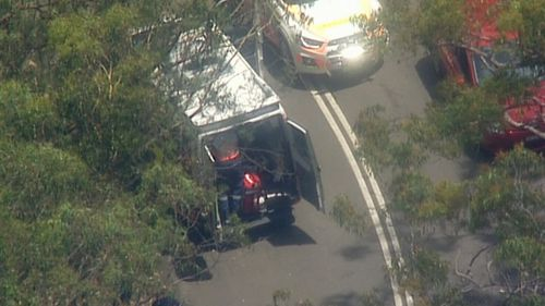 A teenager has been charged after a cyclist was hit and had to be resuscitated in the Ku-ring-gai national park.