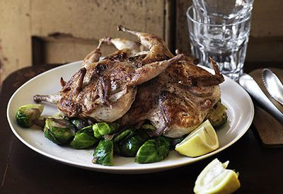 Grilled quail with Brussels sprouts