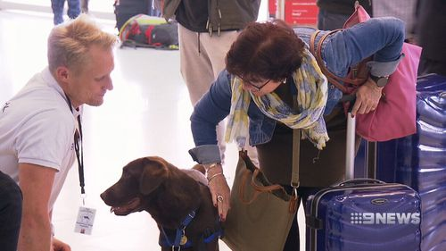 Sydney International Airport has launched emBark, which brings service dogs to the check-in area.