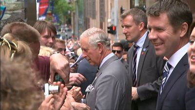 NSW Premier Mike Baird joined the royal couple as they mingled with the crowd. (9NEWS)