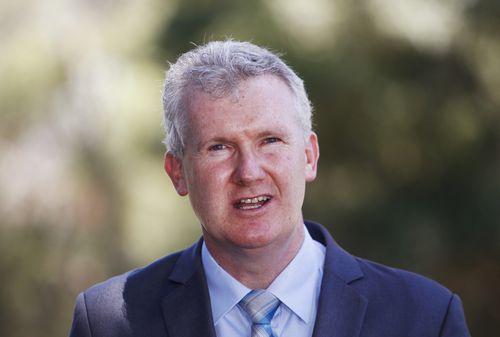 "Labor MP Tony Burke has called Senator Anning's speech ""bile""."