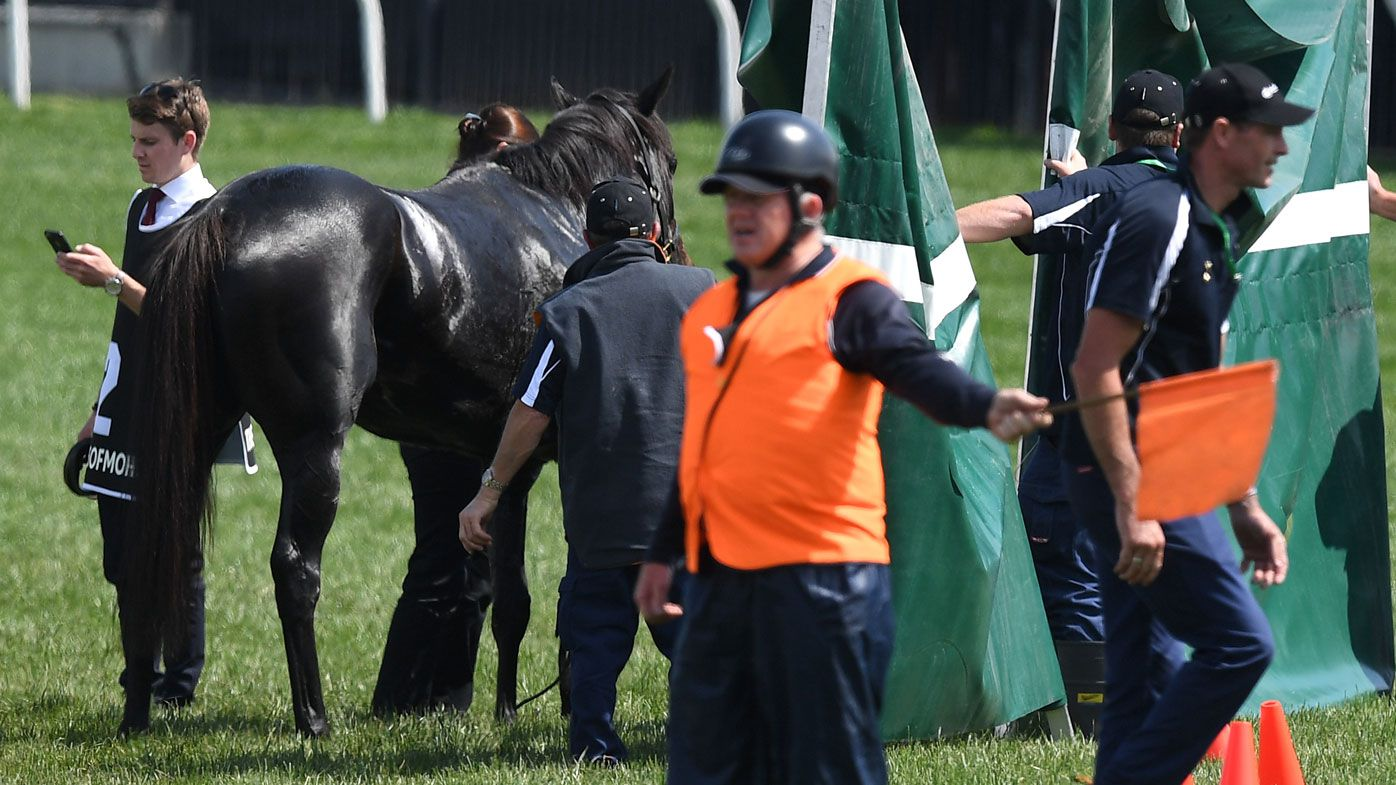 Melbourne Cup 2018: The Cliffsofmoher's race breakdown death sparks outrage