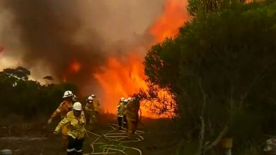 Park closed as bushfire rages