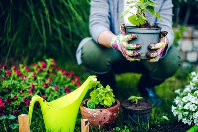 Gardening: 18 minutes