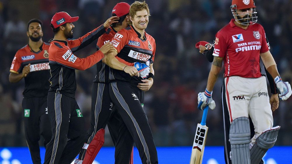 Shane Watson is congratulated after a wicket. (AFP)