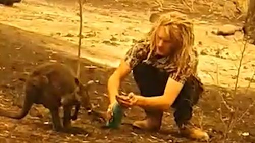 Spencer Norris came to the aid of a wallaby on his fire ravaged Cobargo property this week.