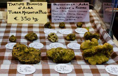 Alba white truffle fair, Italy