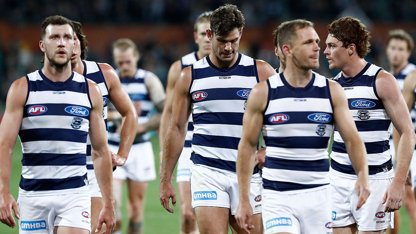Joel Selwood, Tom Hawkins, Sam Menegola, Geelong Cats