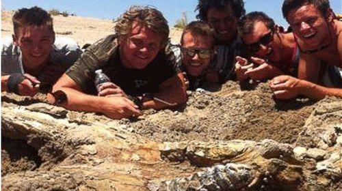 Bachelor party finds mastodon skull