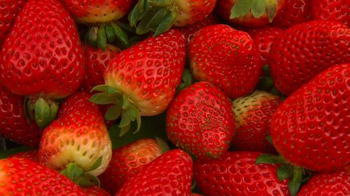 Ripe for the picking: supermarkets and consumers have vowed to support local strawberry growers.