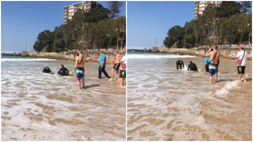 Beachgoers were stunned when the shark washed up on Manly Beach yesterday afternoon. (Via Donna Holland)