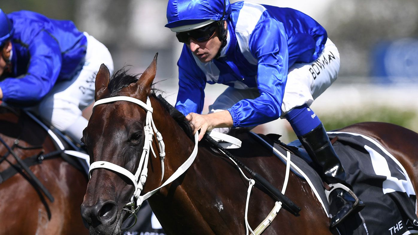 Winx, champion race horse