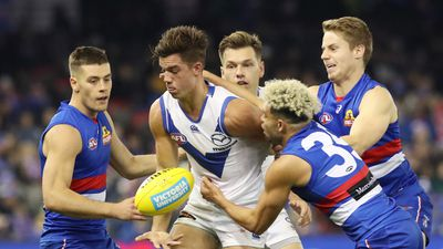 Last-gasp Roos break Bulldog hearts in AFL
