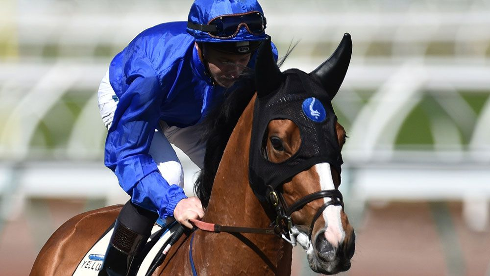 Hartnell on target for Melbourne Cup