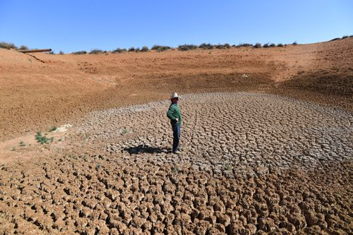 A pastoralist stands at the bottom of one of his empty dams on his property at Langawirra Station, north of Broken Hill, in NSW.