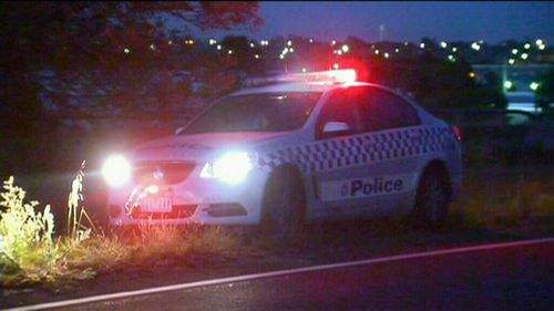Police said the driver allegedly swerved to a avoid a kangaroo. (9NEWS)