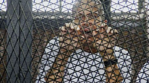 Peter Greste to appeal jail term in Egypt