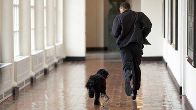 President Obama runs alongside his new dog Bo in the White House halls in 2009.
