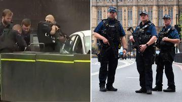 Car crashes into UK Parliament