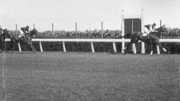 The National Film and Sound Archive has released a new compilation of footage of Phar Lap's historic Melbourne Cup week.