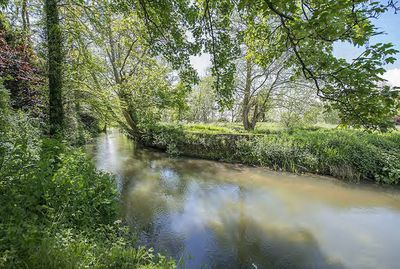 "Property is 19 acres in total, located ""in an idyllic situation alongside the River Rother, with views over the river, weir and water meadows."""