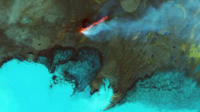 This false-coloured image taken last September shows fresh lava in red spewing from the Holuhraun lava field in Iceland.