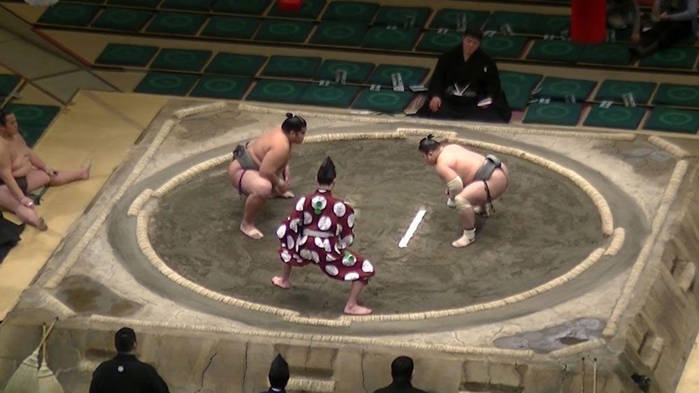 Sumo wrestler lands brutal UFC-style KO