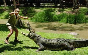 Today's Google Doodle honours the memory of 'Croc Hunter' Steve Irwin on his birthday
