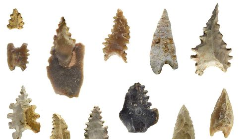 The largely unknown Toalean culture made distinct and complicated stone arrowheads.