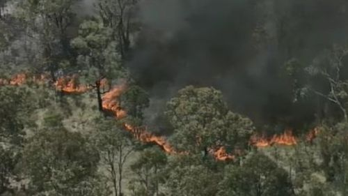 A grass fire is burning out-of-control in Sydney's west. (9NEWS)