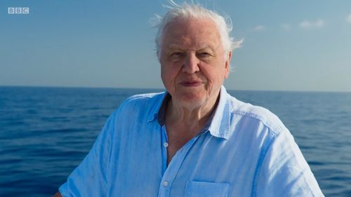 At 91, Sir David Attenborough was still on set for filming as much as he could be. (BBC)