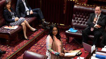 NSW Parliament speaker Faruqi
