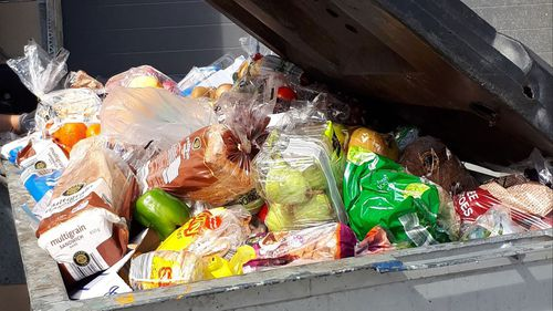 More treasure than trash: Dumpster diving continues to rise across Australia